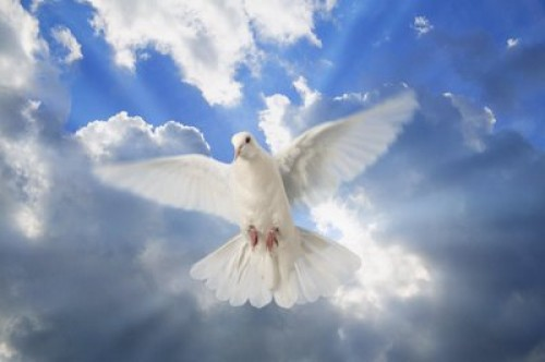 espiritu santo1 e1345486968331 Imágenes del Espíritu Santo