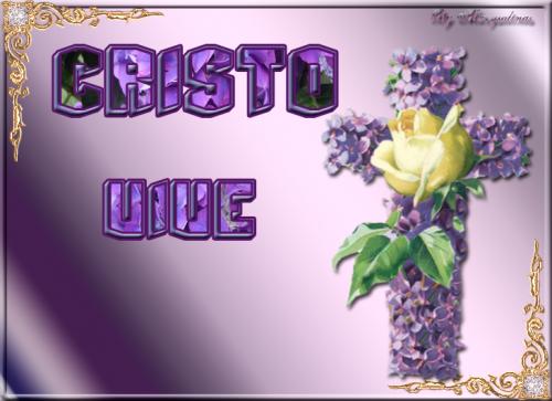 CRISTO-VIVE