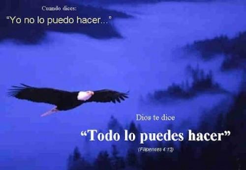DiosDice04