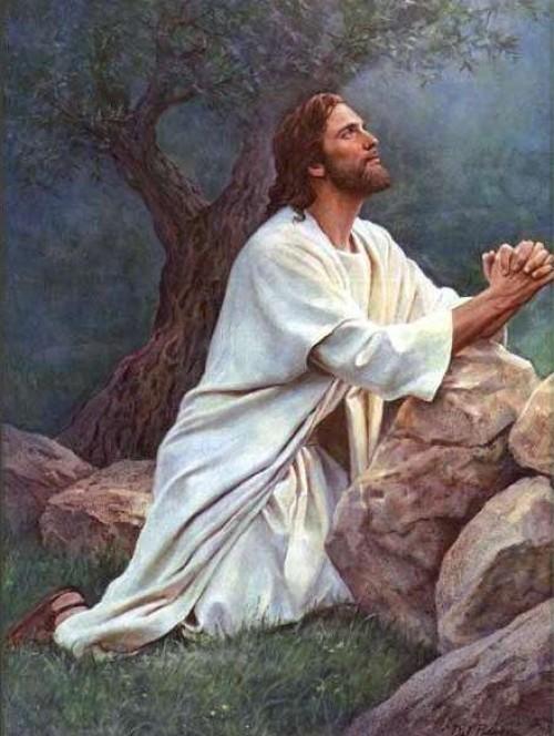 huerto4 e1350148731533 Imagenes de Jesus en el huerto