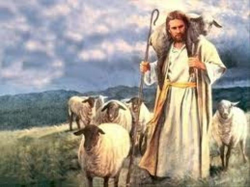 images e1350406550558 Imágenes de Jesús y la Oveja Perdida