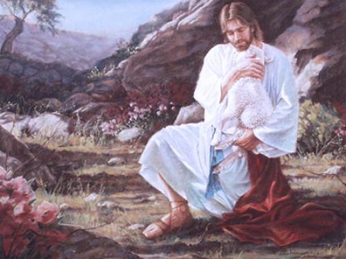 jesus y la oveja 4 e1350406472835 Imágenes de Jesús y la Oveja Perdida