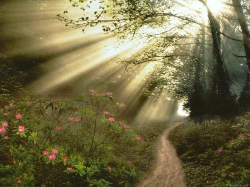 Encontrarás a Dios e1353014065603 Oracion del padre nuestro