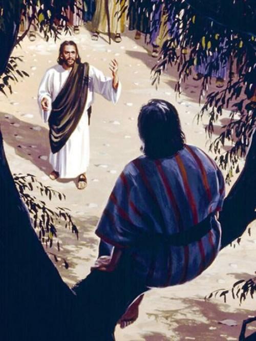 zaqueo y jesus 2