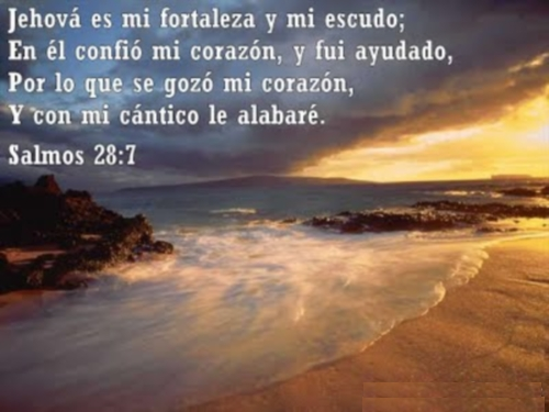 Jehová es mi fortaleza y mi escudo Imágenes de Versículos Inspiradores