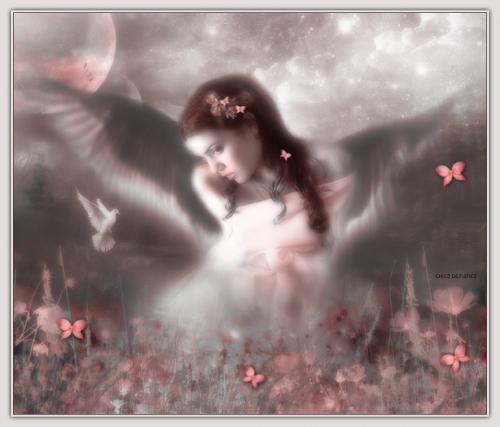 angeles protectores 426501 t0 Imágenes de ángeles protectores