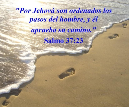 en sus pasos Imágenes de versículos bíblicos