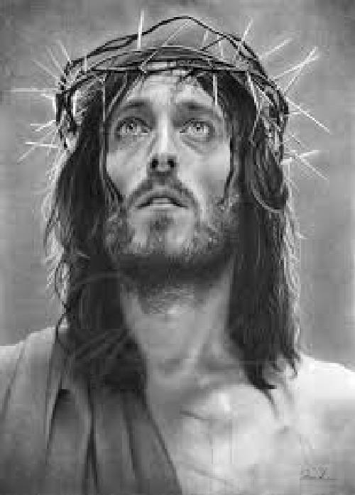 Jesús lloro
