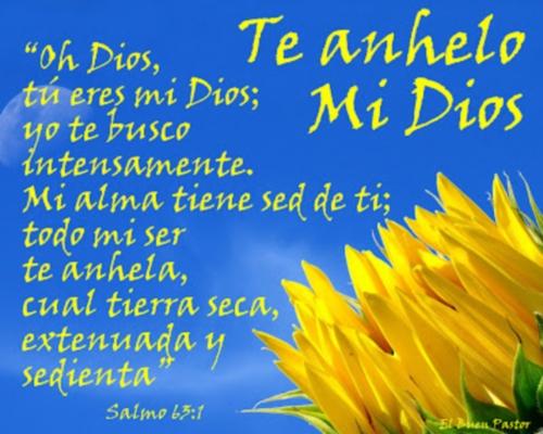 SALMOS 63.1 Imágenes de Salmos