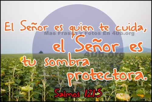 salmos 121 5 Imágenes de Salmos