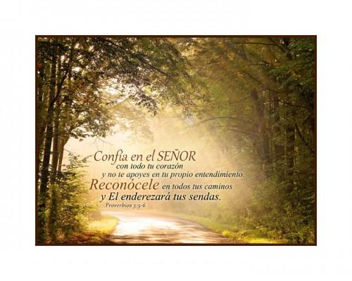 Proverbios 3 5 6 Framed e1377784412343 Fidelidad de Dios Citas Bíblicas