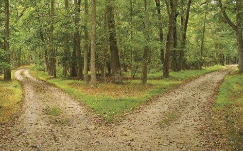 Dos caminos Dos caminos   Reflexión Cristiana