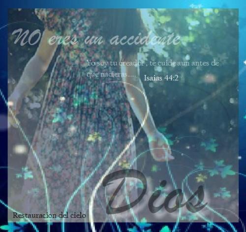no eres un accidente e1378701651929 El Mensaje Reflexión cristiana