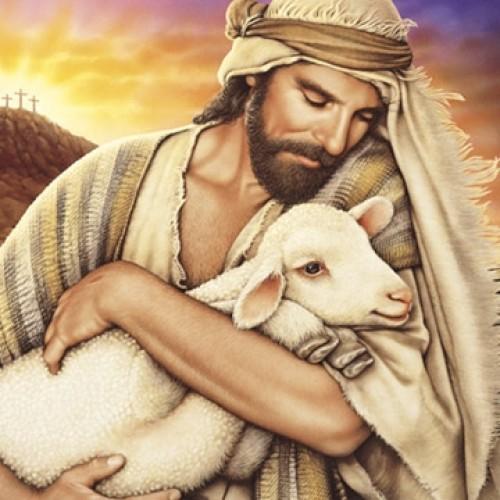 jesus y la oveja
