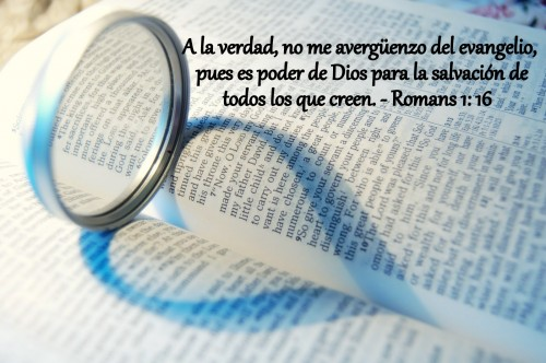 cita biblica Romanos 1-16