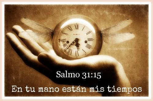 Salmo 31-15