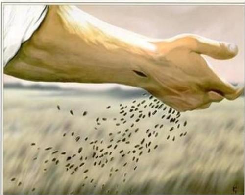 Imagenes de Jesus Sembrador