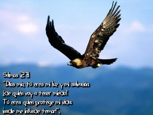 Jesus es mi luz y mi salvacion