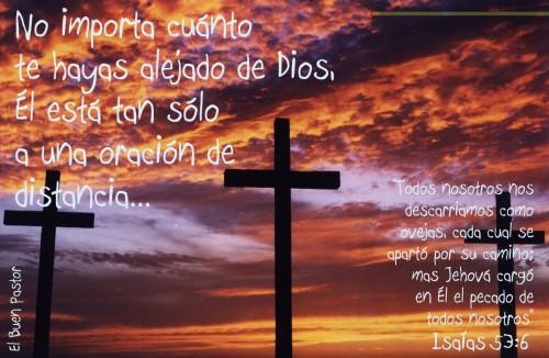isaias 53:6