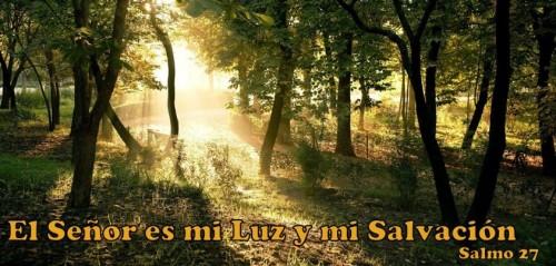 Salmo-27