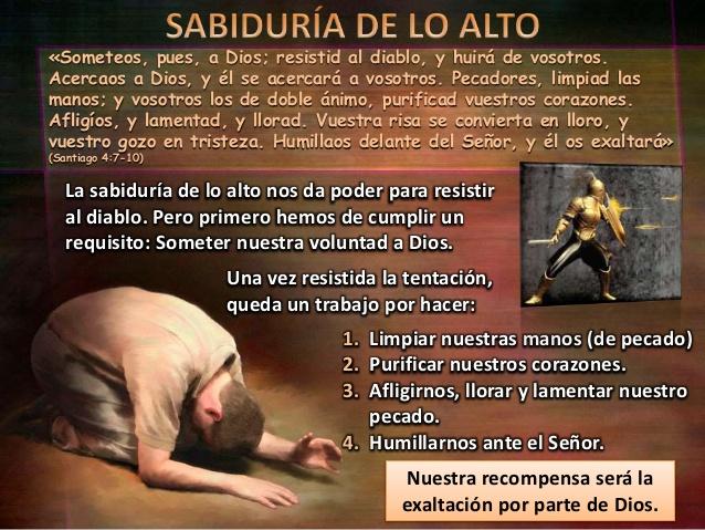 la-humildad-de-la-sabiduria-divina-leccion-8-8-638